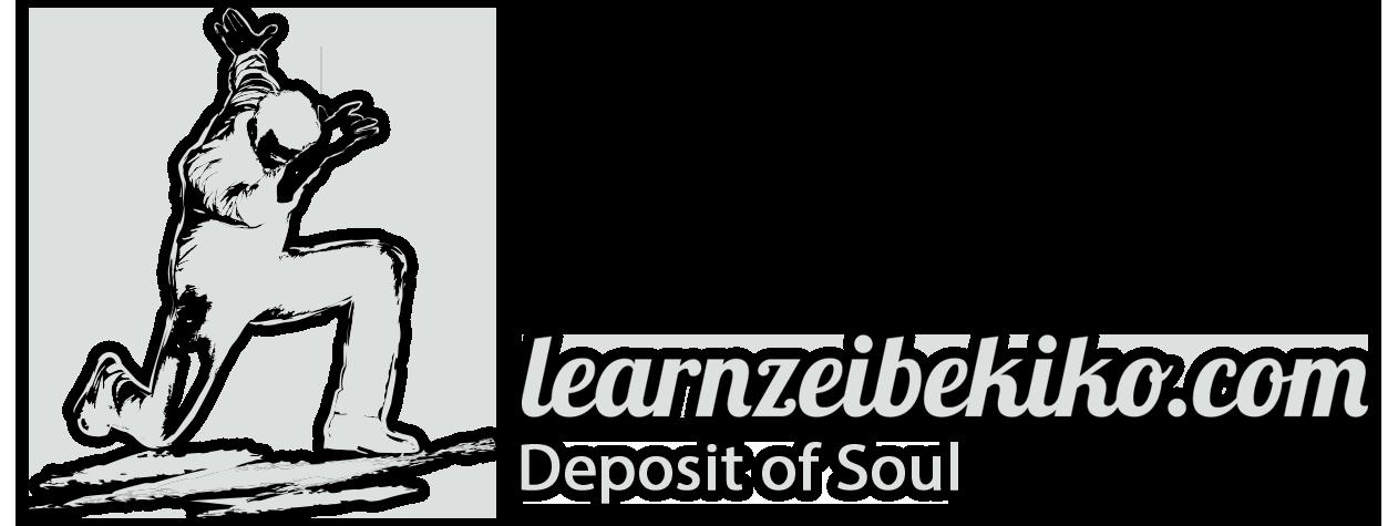learnzeibekiko.com